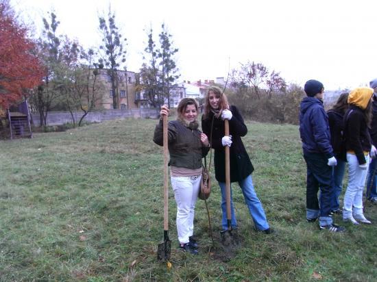 Quentin et Qöghan plantent des arbres dans le parc lors de la journée écologie.