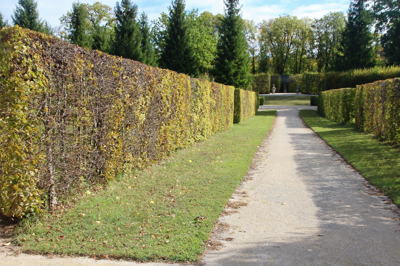 Le jardin Rokoko du chateau de Veitshöchheim