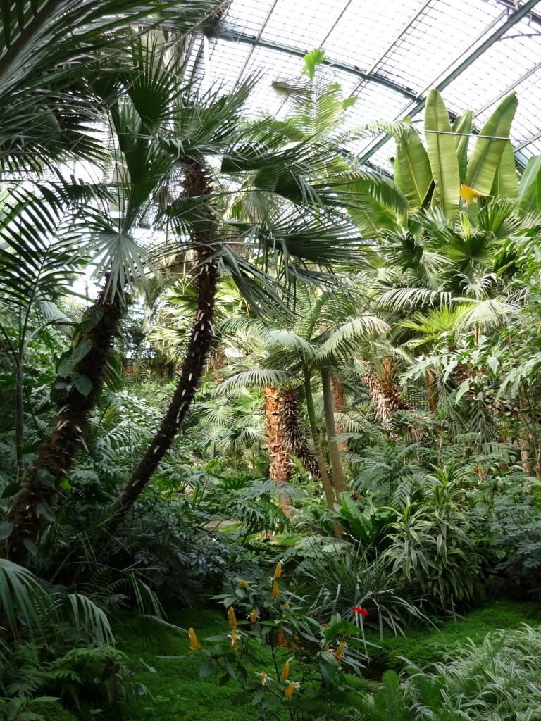 Palmenhaus  La maison des palmiers au Palmengarten de Francfort